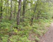 Lot 281 Tribal Trail, Roscommon image