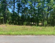 3300 Mount Pisgah Cemetary Rd., Conway image