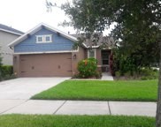 6511 Salt Creek Avenue, Apollo Beach image