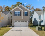 8960 Cat Tail Pond Road, Summerville image
