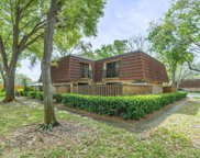 2749 5th Court, Palm Harbor image
