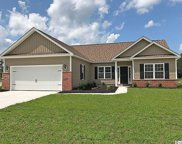 832 Windsor Rose Dr., Conway image