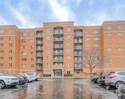 6815 N Milwaukee Avenue Unit #304, Niles image
