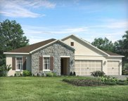 17828 Tidewater Bay Lane, Lutz image