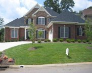 1211 Ansley Woods Way, Knoxville image