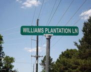 397 Williams Plantation Lane, Beulaville image