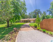 28228 Shannon Drive, Ardmore image