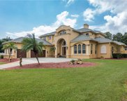 11363 Knights Griffin Road, Thonotosassa image