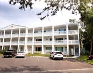 2021 Australia Way W Unit 51, Clearwater image