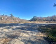 16302 Holly Springs  Road, Northport image
