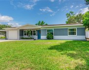 10221 N Valle Drive, Tampa image