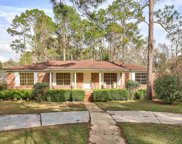 2802 Tipperary, Tallahassee image