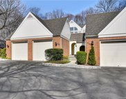 38 Sedgwick Village  Lane Unit 38, Darien image