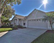 9213 Sunflower Drive, Tampa image