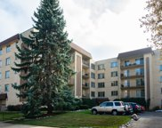 6433 West Belle Plaine Avenue Unit 507, Chicago image