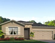 31356 Tansy Bend, Wesley Chapel image
