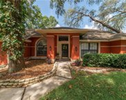 1521 Waterwood Drive, Lutz image