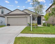 14216 Covert Green Place, Riverview image