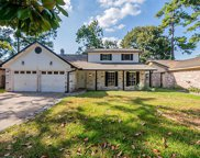 2111 Wood River Drive, Spring image