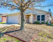 16116 Hollyhill Court, Fort Worth image