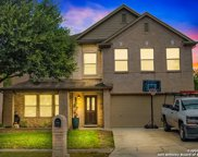 11009 Forest Pass Ct, Live Oak image
