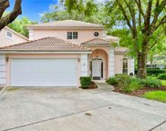 15334 Sherwood Forest Drive, Tampa image