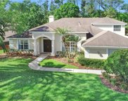 10307 Greenhedges Drive, Tampa image