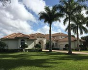 11433 Golden Eagle Ct, Naples image