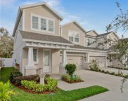14504 Rocky Brook Drive, Tampa image