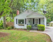 313 Willow Springs Drive, Greenville image