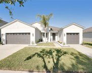 13509 Freemark Briar Place, Riverview image
