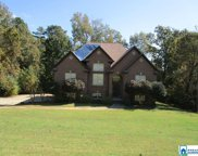 1155 Summit Ridge Way, Odenville image