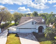 4211 N River View Avenue, Tampa image