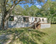 1961 SATINWOOD ST, Bunnell image