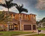 4610 Apple Ridge Lane, Tampa image