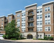 455 West Wood Street Unit 213, Palatine image