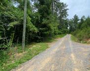 Azalea Trail, Sevierville image