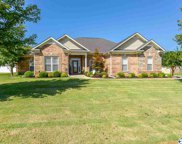 250 Wes Ashley Drive, Meridianville image