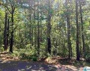 000 Mountain Ridge Rd, Trussville image