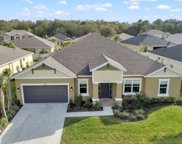 26869 Fiddlewood Loop, Wesley Chapel image