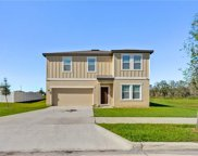 16386 Blooming Cherry Drive, Groveland image