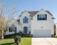 8915 Waltham Forest  Court, Waxhaw image