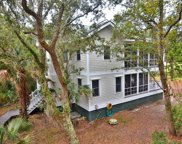 41 Dowitcher Trail, Bald Head Island image
