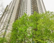1255 North Sandburg Terrace Unit 201, Chicago image