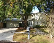 4705 Ranchway Court, Tampa image