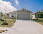 288 Fall Aster Drive, Kyle image