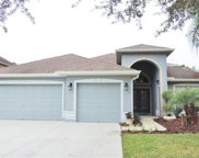 8211 Myrtle Point Way, Tampa image