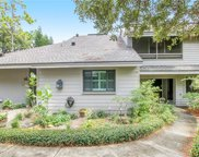 302 Old Mill Pond Road, Palm Harbor image