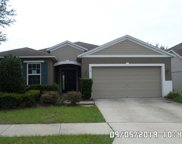 314 Red Kite Drive, Groveland image