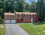 16 Franklin Woods  Drive, Somers image